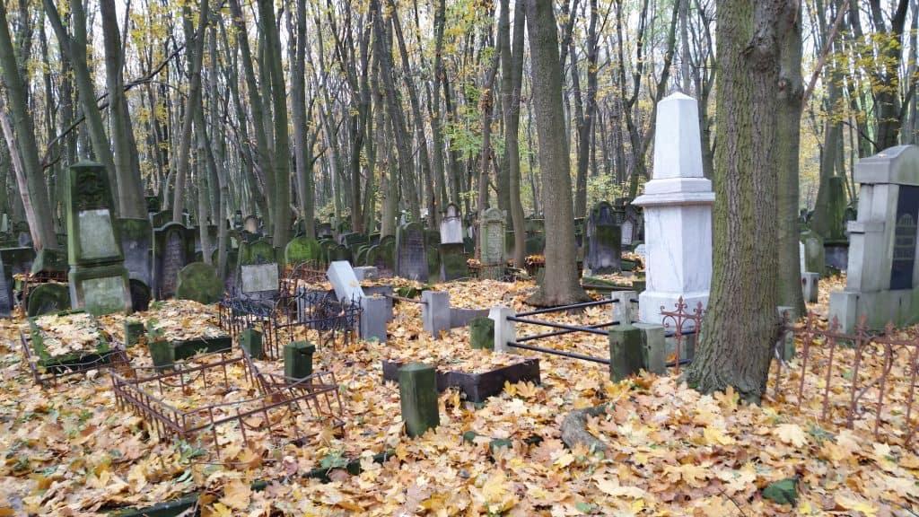 warsaw-jewish-cemetery